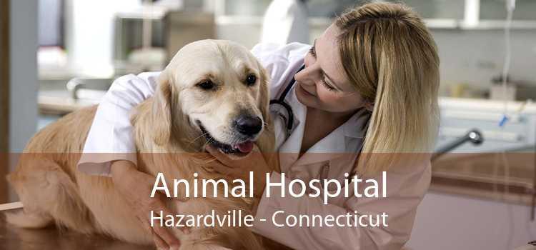 Animal Hospital Hazardville - Connecticut