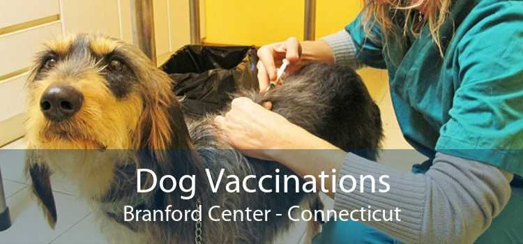 Dog Vaccinations Branford Center - Connecticut