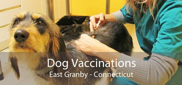 Dog Vaccinations East Granby - Connecticut