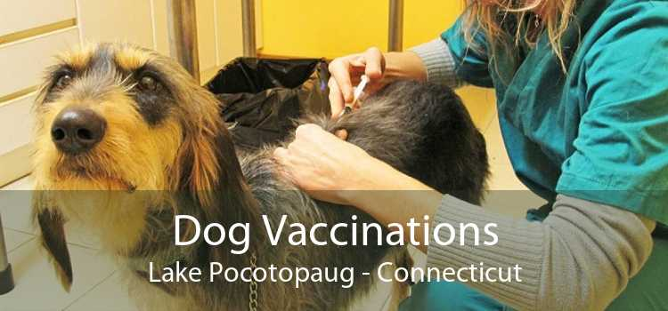 Dog Vaccinations Lake Pocotopaug - Connecticut