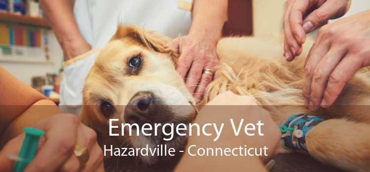 Emergency Vet Hazardville - Connecticut
