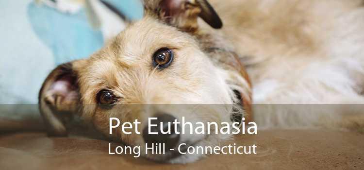 Pet Euthanasia Long Hill - Connecticut