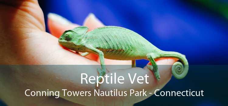 Reptile Vet Conning Towers Nautilus Park - Connecticut