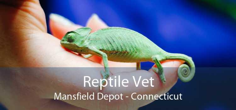 Reptile Vet Mansfield Depot - Connecticut