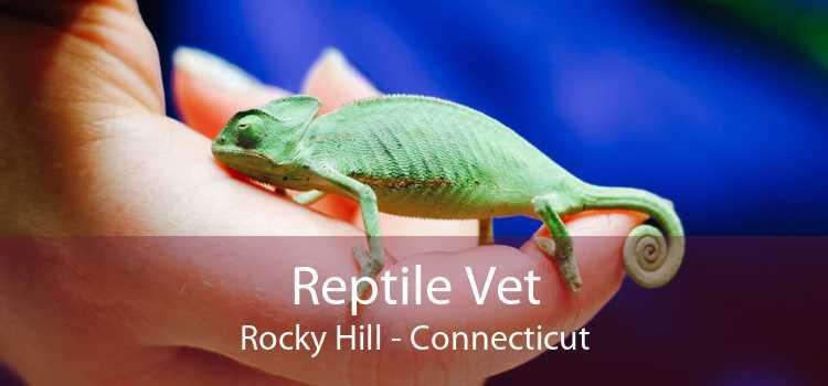 Reptile Vet Rocky Hill - Connecticut