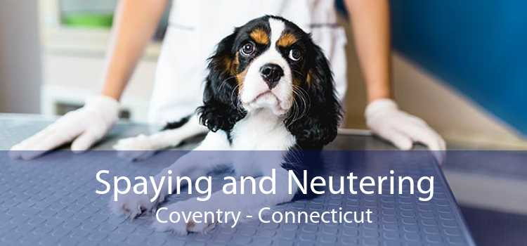 Spaying and Neutering Coventry - Connecticut