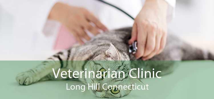 Veterinarian Clinic Long Hill Connecticut