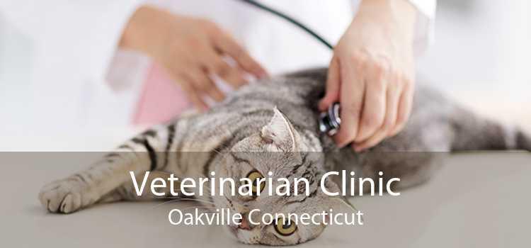 Veterinarian Clinic Oakville Connecticut
