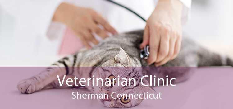 Veterinarian Clinic Sherman Connecticut